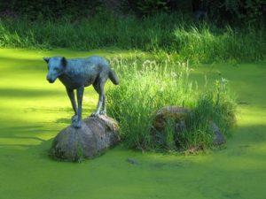 Gruppen-Naturcoaching in der Wolfsbrunnen-Anlage bei Heidelberg